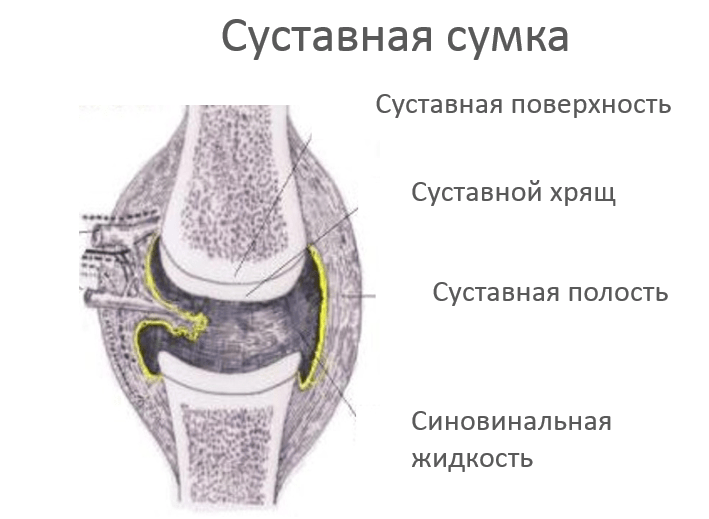 Как решить проблему заболевания костей и суставов